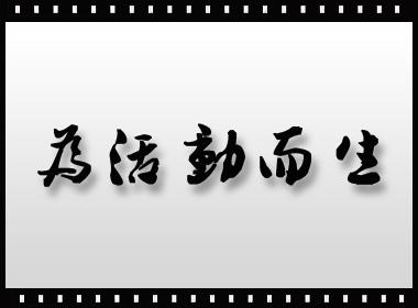 南昌活动执行